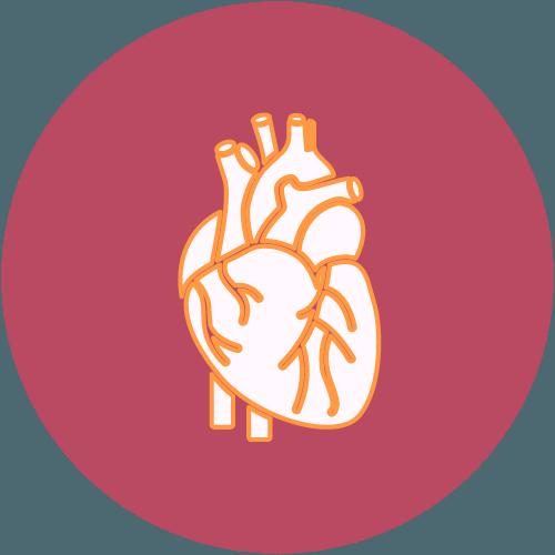 Herz Röteln